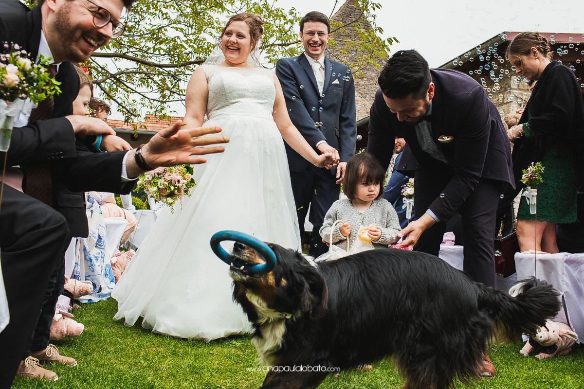cerimônia de casamento com cachorro